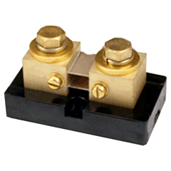 Ram Meter Inc. 21M200A50 - 200 Amp 50 DCmV DC Current Shunt
